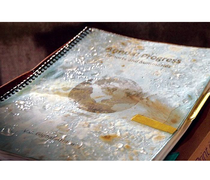 Water Damage Wet Document Restoration