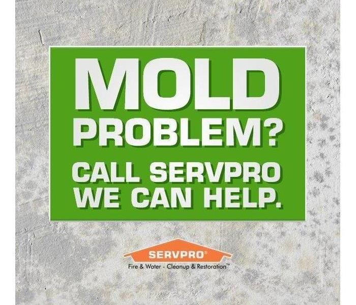 Mold Remediation Mold Problem in East Prairie?