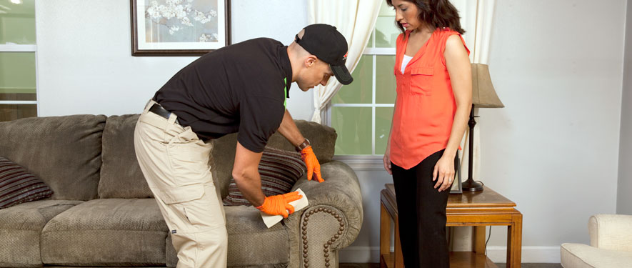 Cape Girardeau, MO carpet upholstery cleaning